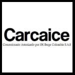 CARCAICE-01